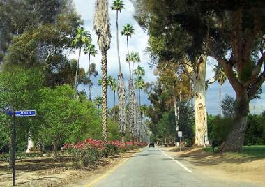 Victoria Avenue, Riverside California