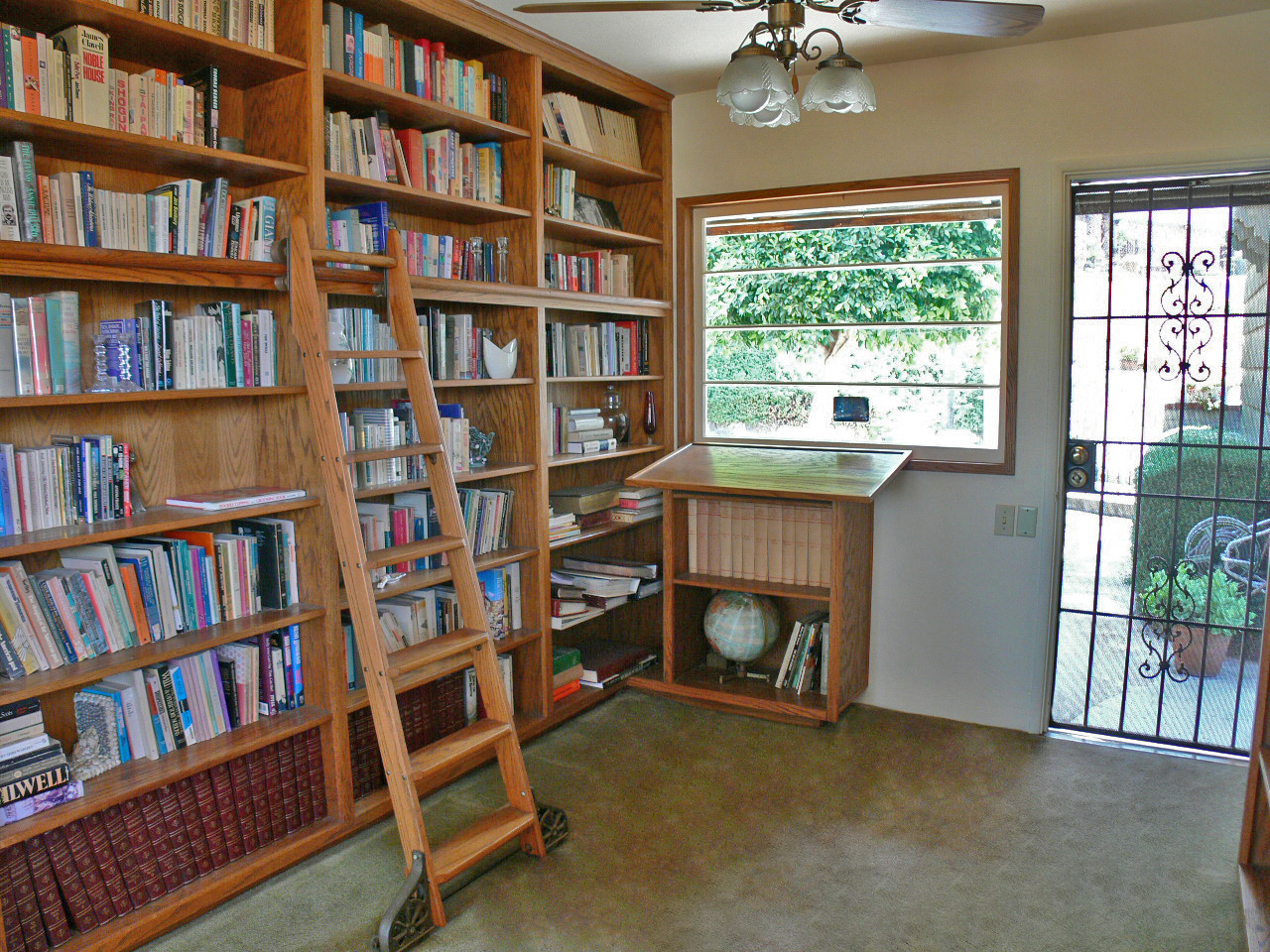 Library with ladder.