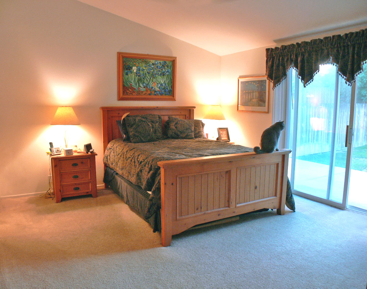 Master bedroom suite with cathedral ceiling, large walk-in closet, and sliding doors to large backyard and patio.
