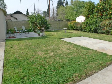Pool-sized backyard with citrus trees, RV access, and an RV pad which could easily be removed to include more grassy area.