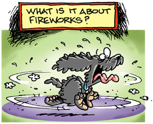 Dogs and fireworks don't mix!