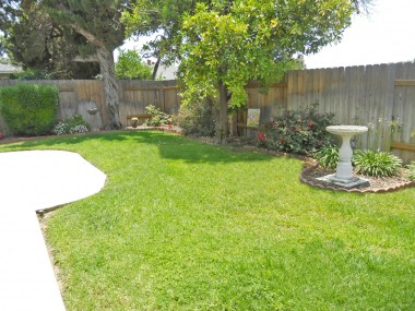 View of left side of backyard from patio.