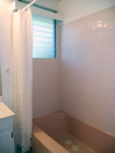 Hallway bathroom with original tub enclosure so well maintained that it looks new!