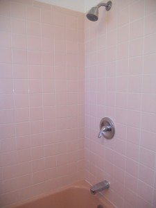 Original tiled shower/tub enclosure looks brand new!