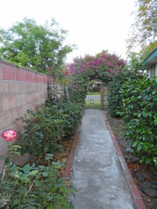 Gorgeous side yard with two arbors, rose bushes, greenery, private blockwall, and a wrought iron gate.