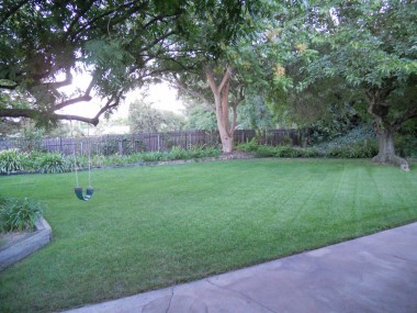 Sweeping pool-sized backyard with no direct neighbors behind you. View of hills in the distance (see next photo). Mature shade trees and automatic irrigation.