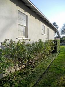 a-side house