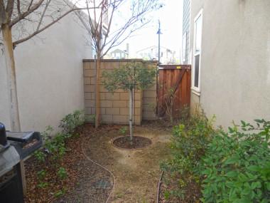 a-side yard