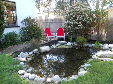 Elaborate koi pond with live koi and a long meandering and serene waterfall.