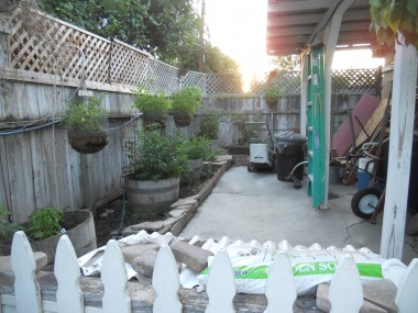 Garden area behind the garage, complete with privacy fence, tomato plants, and area for potting shed.
