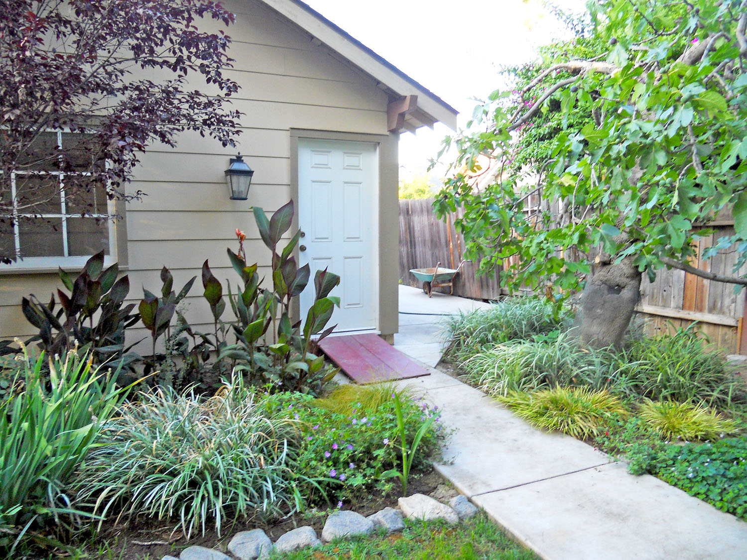 Another view of garage with lush landscaping, mature and producing fig tree, and cemented side yard which could be utilized for boat or small RV parking.