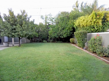 Spacious pool-size backyard completely enclosed by block walls and some wrought iron gates. Sprinklers, and a peach tree and citrus trees.