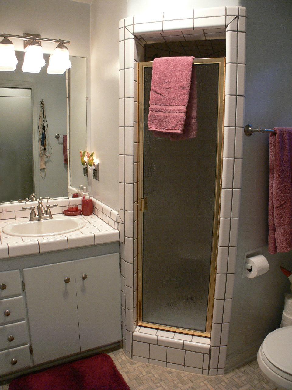 Fancy Downstairs three quarter bathroom off the kitchen