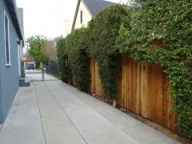 Tall bushes line the private and gated  driveway.