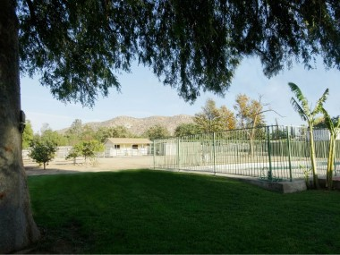 Grassy and mature tree-shaded area  next to fenced pool, looking back  towards the barn and mini orchard --  and get a load of that awesome view of  the Norco hills!