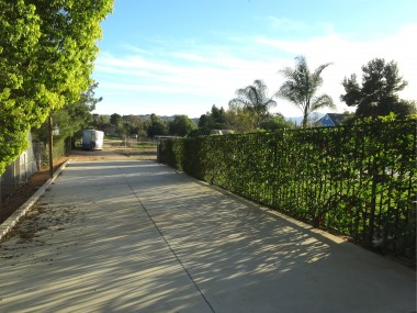 Alternate view of wide paved driveway  on side of home leading to the huge  backyard. Note that the backyard grassy  area and pool are completely enclosed  with gorgeous hibiscus-covered  wrought iron fencing!