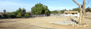 Panorama shot of backyard with a large  turnout and a large round pen, in  addition to the 2-stall barn with  plumbing and electrical, and tack room.  Notice the extra large wash rack in  foreground at base of tree.