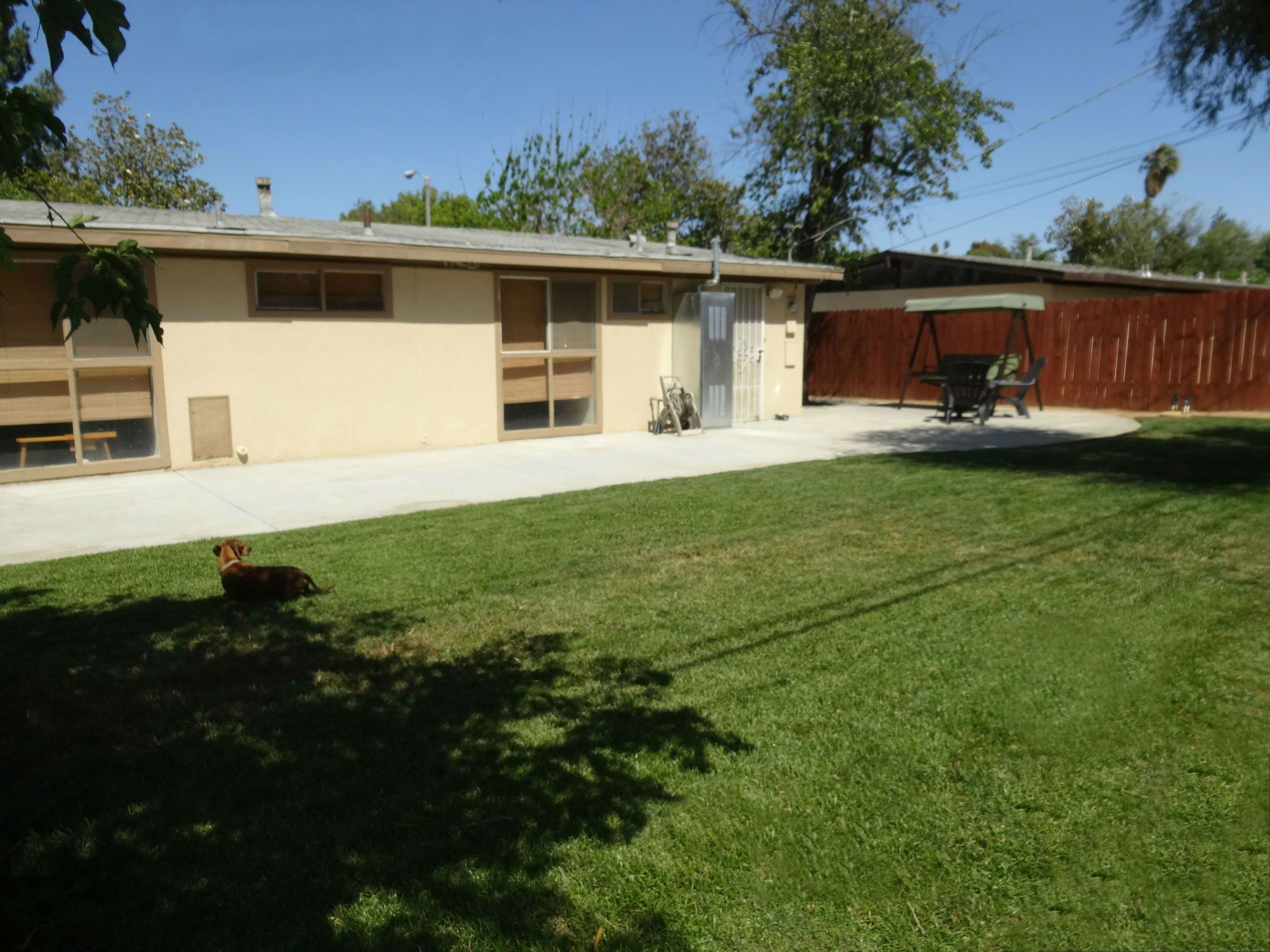 Spacious backyard with privacy fence and flowing green grass, fruit trees, and dedicated BBQ area on side.