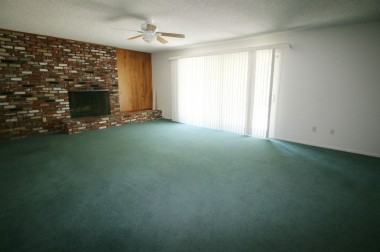 Large living room with fireplace and newer slider to lovely back yard.