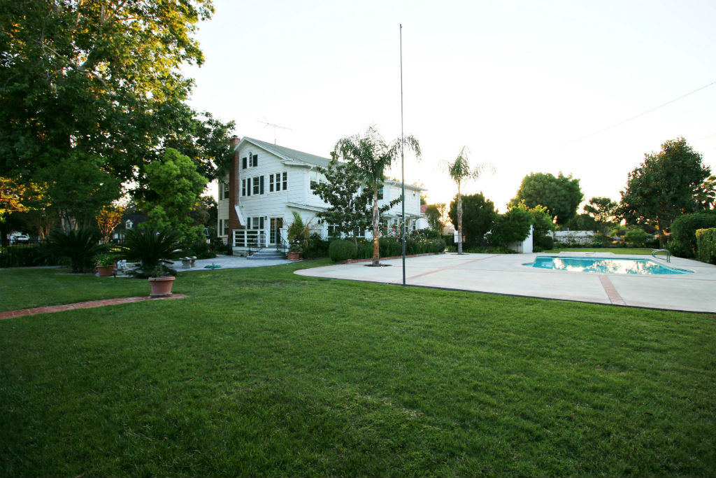 Another view of the back from one of the far corners of the yard.