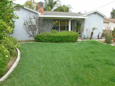Fully landscaped backyard with mow strip, sprinklers, and a large amount of mature citrus trees.