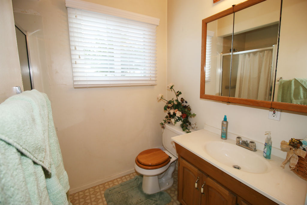 Hallway bathroom with separate shower.