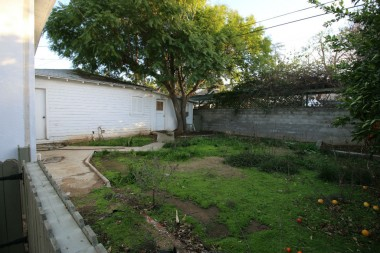 Backyard has been a little neglected, but loads of potential! Note the workshop attached to the garage.