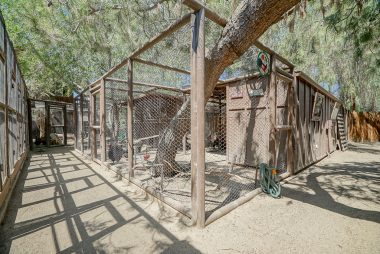 In addition to chicken coops, there is a bird aviary and more storage. All of the pens are completely enclosed to protect from hawks and owls.