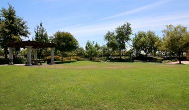 Grassy park-like space for children and pets to frolic. This is right in front of the visitor parking. Pets ARE ALLOWED in this complex.