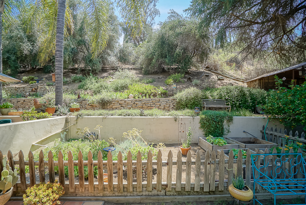Fenced garden area in the back yard with lemon trees to one side and a patio on the other side, with the wildlife hill behind. You'll be honored to spot an occasional wild bunny, roadrunner, and all kinds of birds including hawks and owls.