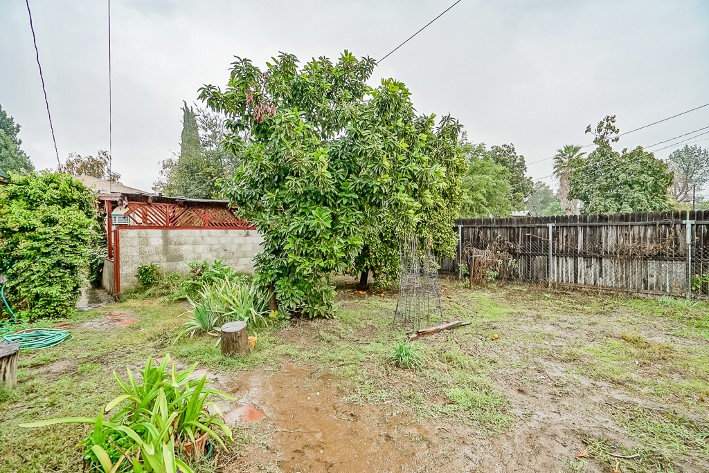 Large back section of yard with citrus and room for pool, garden beds, extra parking, or whatever you desire.