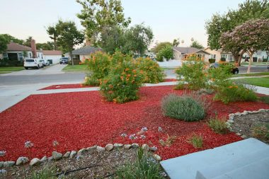 Drought-tolerant landscaping. There is a sprinkler system underneath in case new owner wants to re-install grass.