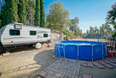 Spacious backyard with above ground pool (included), shed, and fruit trees.