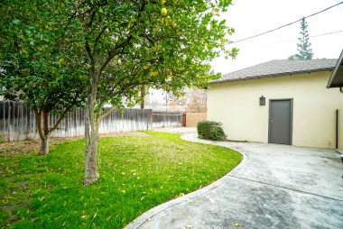 Back portion of yard with lemon and orange trees, and even more space behind the garage for gardens, dog run, or storage.