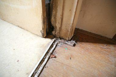 Wood door frame damage at entry to hallway bathroom.