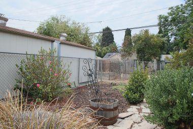 Drought tolerant back yard.
