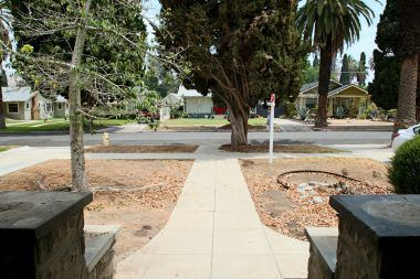 Front yard needs some attention, but what an amazing blank slate for a drought-tolerant landscape theme.